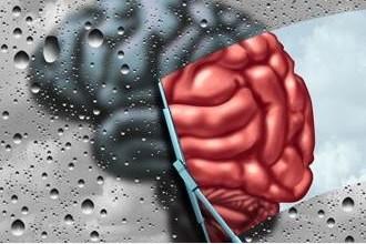 Photo of مرض باركنسون قد يبدأ من المعدة وينتقل للدماغ!
