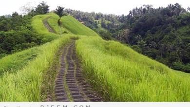 Photo of أماكن مذهلة لركوب الدراجات الهوائية في اندونيسيا