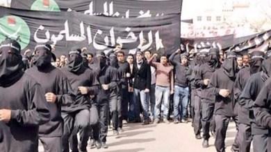 Photo of مصر: التحفظ على 18 شركة تجارية لتورطها في تمويل جماعة الإخوان