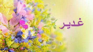 Photo of معنى اسم غدير