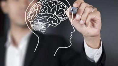 Photo of لماذا العقل الضميري هو العقل الناجح ؟