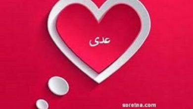 Photo of معنى اسم عدي