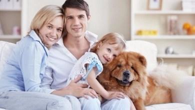 Photo of 5 نصائح للموازنة بين علاقتك مع شريك حياتك وعلاقتك مع أبنائك