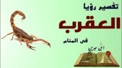 Photo of تفسير العقرب في الحلم ابن سیرین