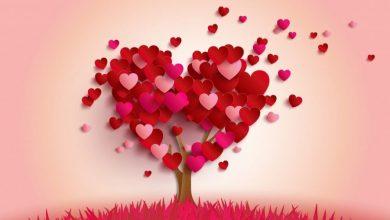 Photo of رسائل عيد الحب