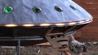 Photo of بالفيديو: زوجان يبنيان طبقاً طائراً لإيواء طيورهما