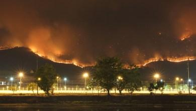 Photo of ما الذي ينبغي القيام به عند اشتعال حرائق في الأحراش القريبة من مناطق السكن