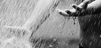 Photo of عبارات عن الشتاء والمطر