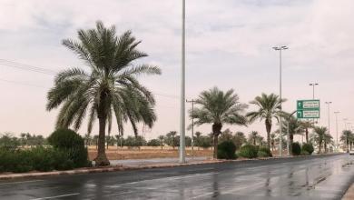 Photo of أمطار غزيرة على حائل.. وإنذار مبكر من تواصل هطولها