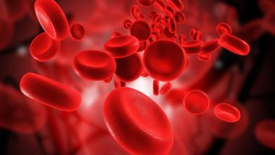 Photo of بكتيريا الدم اسباب و اعراض