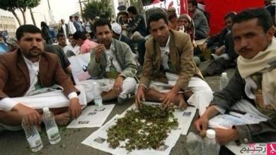 Photo of اليمن: ازدهار تجارة مخدر القات في صنعاء الخاضعة للحوثيين