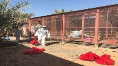 Photo of إصابات بإنفلونزا الطيور بالرياض والدمام والزلفي
