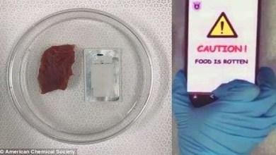 Photo of علماء يطورون جهازاً ذكياً لكشف الأطعمة الفاسدة