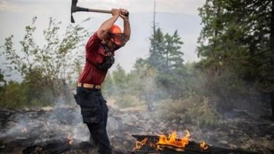 Photo of لاتفيا: الحرائق تلتهم نحو 800 هكتار من الغابات