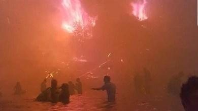 Photo of اليونان: ارتفاع عدد قتلى حرائق الغابات إلى 91 شخصاً