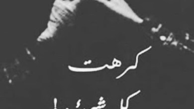 Photo of شعر عن القهر والحزن قصير , كلام عن القهر والظلم