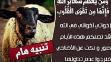 Photo of صور مكتوب عليها حكم السخرية و الاستهزاء بالاضاحي