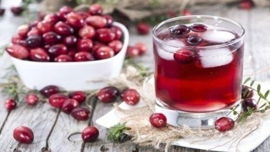 Photo of التوت البري الأحمر.. غذاء خارق
