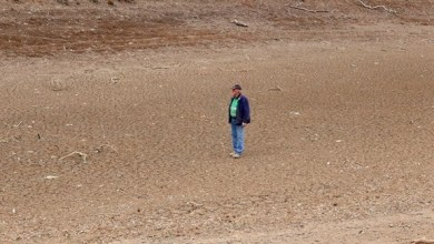 Photo of توقعات بتفاقم الجفاف بالساحل الشرقي لأستراليا