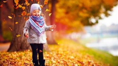 Photo of فلكيًا اليوم يبدأ فصل الخريف لعام 2018