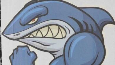 Photo of صور القرش الهلالي , تميمة شعار نادي الهلال , صور قرش الهلال للتصميم