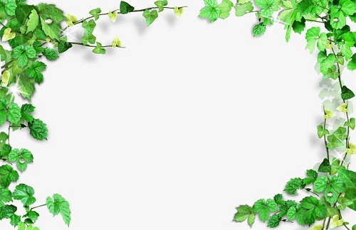 صور براويز خضراء اطارات خضراء مفرغة للكتابة صور بطاقات اخضر