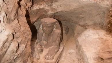 """Photo of مصر: اكتشاف تمثال لـ """"أبو الهول"""" في معبد كوم أمبو بأسوان"""
