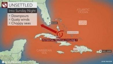 Photo of أمريكا: تحذير من عاصفة على ساحل خليج المكسيك مع اقتراب إعصار