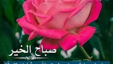 Photo of صورصباح الخير جميلة