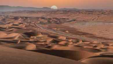 Photo of التليغراف تدعو السائحين لزيارة المملكة: معالم رائعة في انتظاركم -صور
