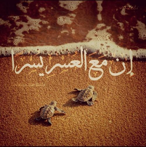 صور اسلامية مكتوب عليها ايات قرآنية معبرة