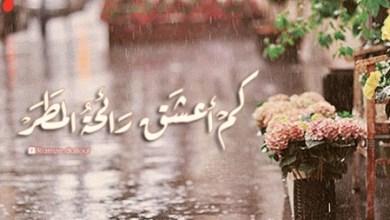 Photo of رائحة المطر , كلمات عن رائحة المطر