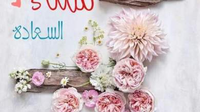 Photo of مساء الخير , رسائل مسائية قصيرة , عبارات مسائية