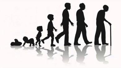 Photo of العوامل الوراثية لا تؤثر على طول العُمر