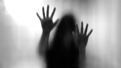 Photo of السجن 3 سنوات لخليجي تحرش بشقيقة زوجته في دبي