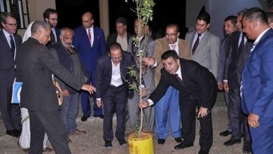Photo of الخارجية الليبية تفرض على كل صحافي غرس شجرة برتقال