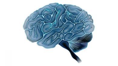 Photo of أورام الدِّماغ غير السَّرطانيَّة , أنواع أورام الدِّماغ الحميدة , أسباب الورم الدِّماغيّ الحميد , عِلاج الورم الدِّماغيّ الحميد ,