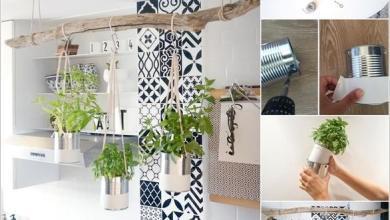 Photo of 10 أفكار لحديقة أعشاب منزلية في المطبخ