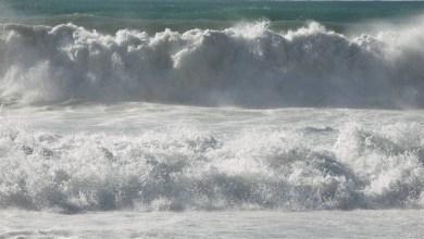 "Photo of ""الأرصاد الإماراتية"": استمرار الرياح النشطة واضطراب الموج"