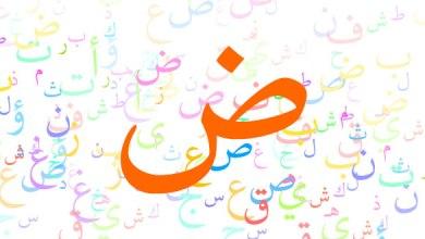 Photo of حل كتاب لغتي للصف السادس الوحده الثانيه 1440