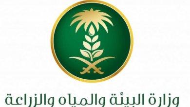 Photo of ماهي المهن الزراعية التى خارج التوطين فى السعودية