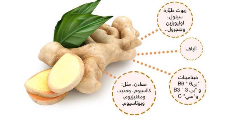 Photo of فوائد الزنجبيل Ginger , اضرار الزنجبيل , طريقة استخدام الزنجبيل