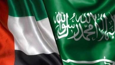 Photo of بحث فرص الشراكات التجارية الجديدة بين الإمارات والسعودية