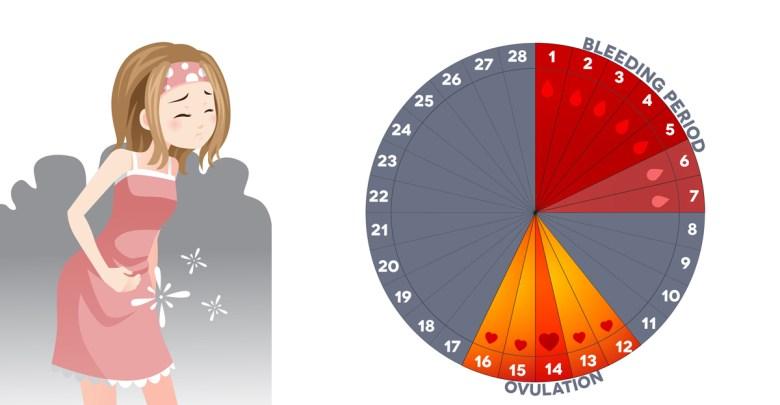 اسباب عدم انتظام الدورة الشهرية لغير المتزوجات