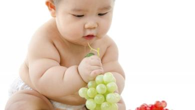 Photo of طرق فعالة لعلاج السمنة عند الأطفال