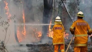 Photo of اندلاع عشرات الحرائق في أستراليا بسبب حرارة استثنائية