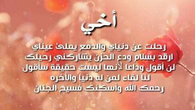 Photo of عبارات عن فقدان الأخ
