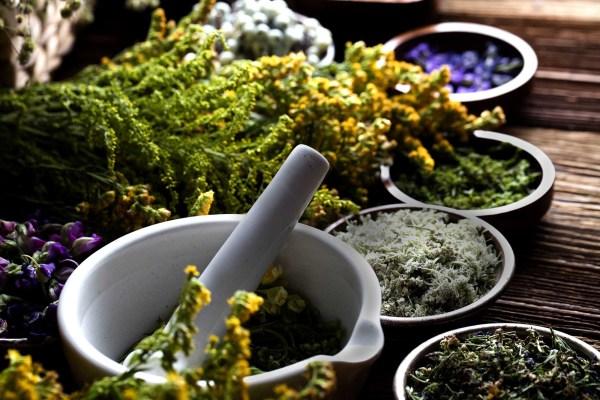 10 أعشاب سحرية لتخفيف الوزن