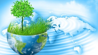 Photo of أهمية الماء في الطبيعة