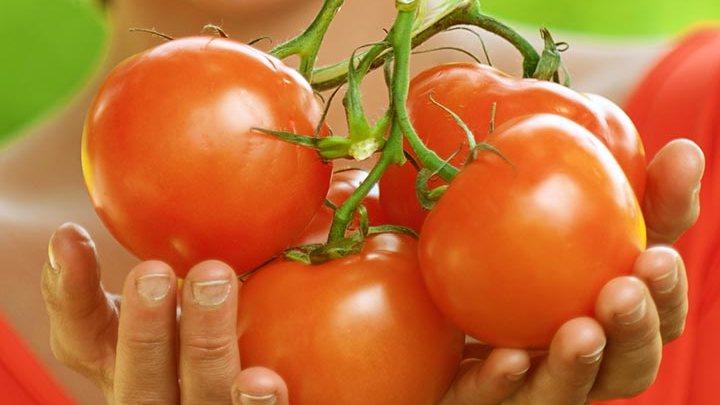 Photo of أفضل ١٠ ماسكات الطماطم للوجه